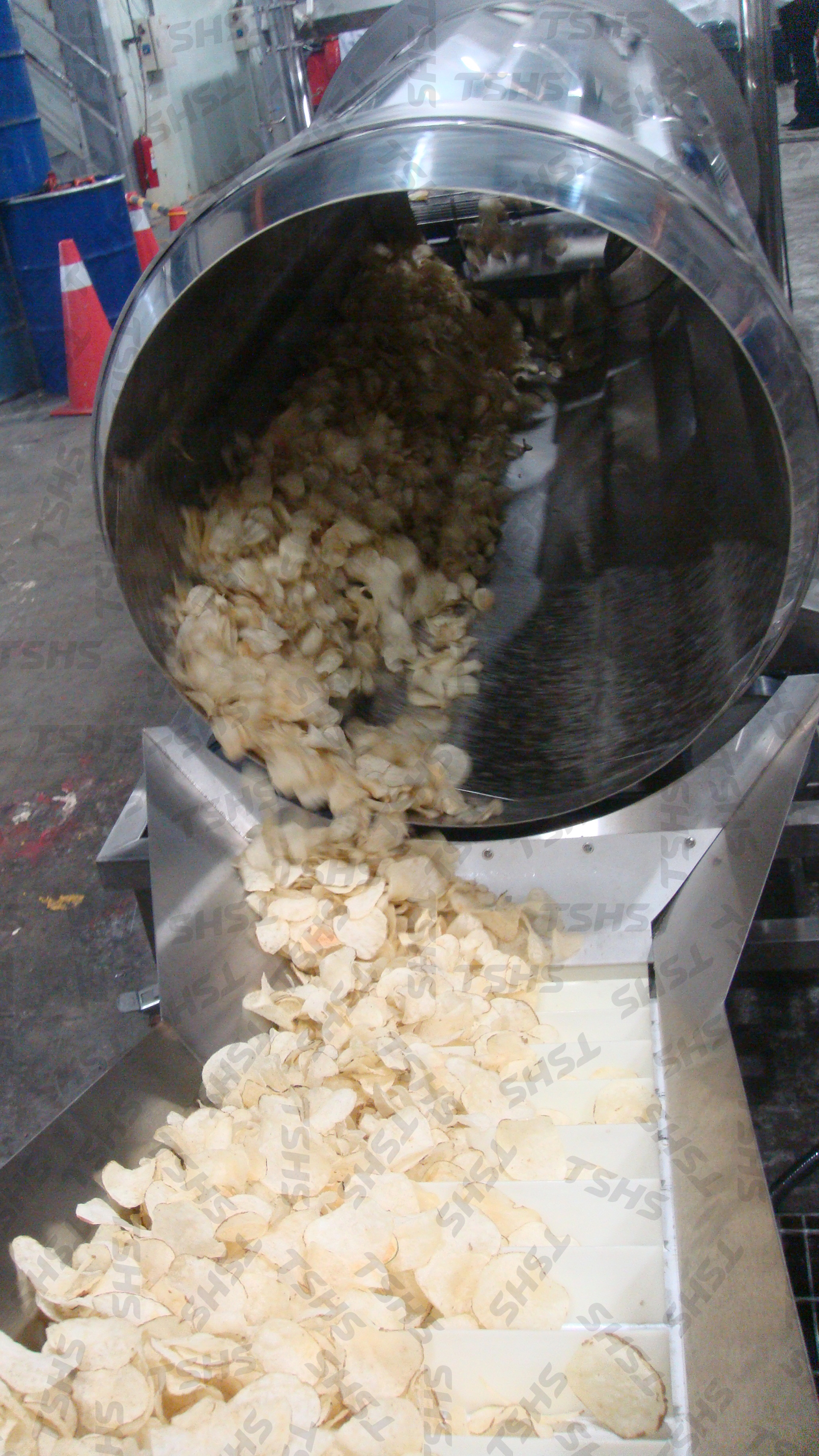 Potato Chips Production Line- Seasoning System