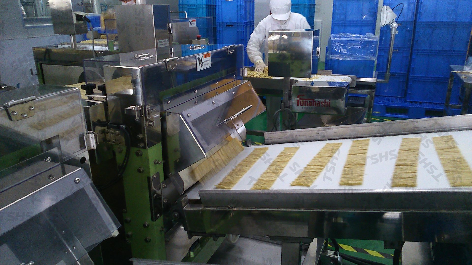 fish_shred_production_line