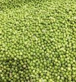 Green_Pea_Production_Line_Soaking